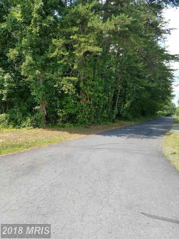 15 Shady Pine Drive, Capon Bridge, WV 26711 (#HS10290813) :: Bob Lucido Team of Keller Williams Integrity