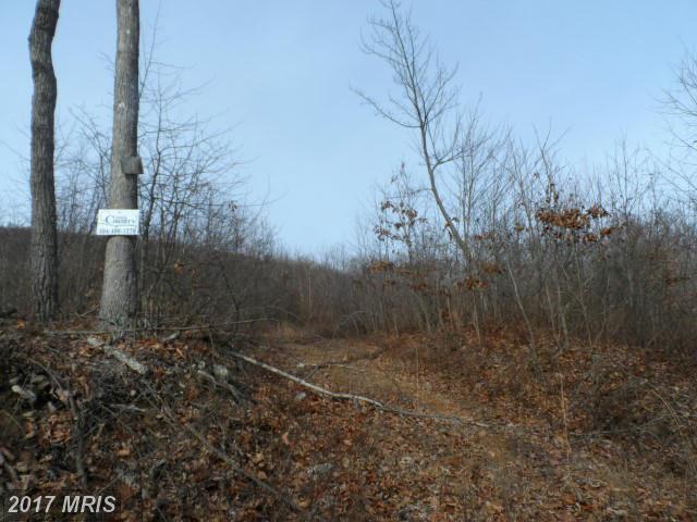 Lot 17 Falconwood Drive, Paw Paw, WV 25434 (#HS9848861) :: LoCoMusings