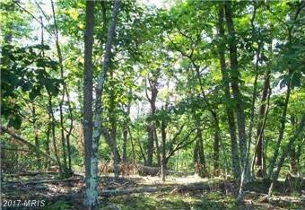 Thistle Ridge Road, Romney, WV 26757 (#HS9881754) :: Pearson Smith Realty