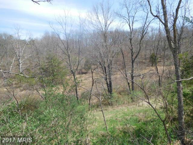 Lot 15 Bell Hollow Estates, Augusta, WV 26704 (#HS9914128) :: LoCoMusings