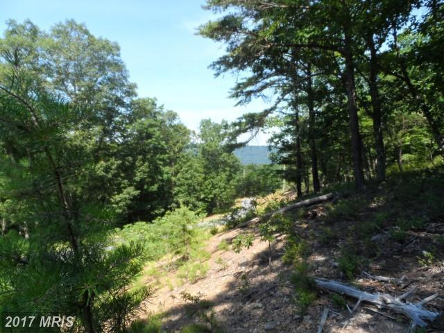 Lot 20 Red Feather Drive, Romney, WV 26757 (#HS9991184) :: Pearson Smith Realty