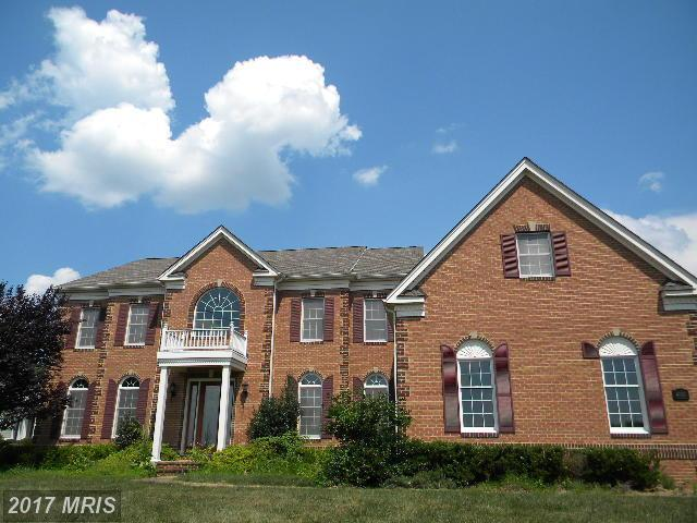 4908 Valley View Overlook, Ellicott City, MD 21042 (#HW10099469) :: Keller Williams Pat Hiban Real Estate Group