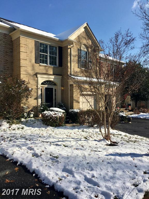 8507 Timberland Circle, Ellicott City, MD 21043 (#HW10119272) :: The Sebeck Team of RE/MAX Preferred