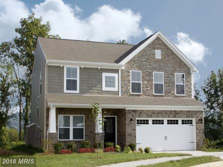 2526 River Ridge Trail, Ellicott City, MD 21043 (#HW10133695) :: Pearson Smith Realty