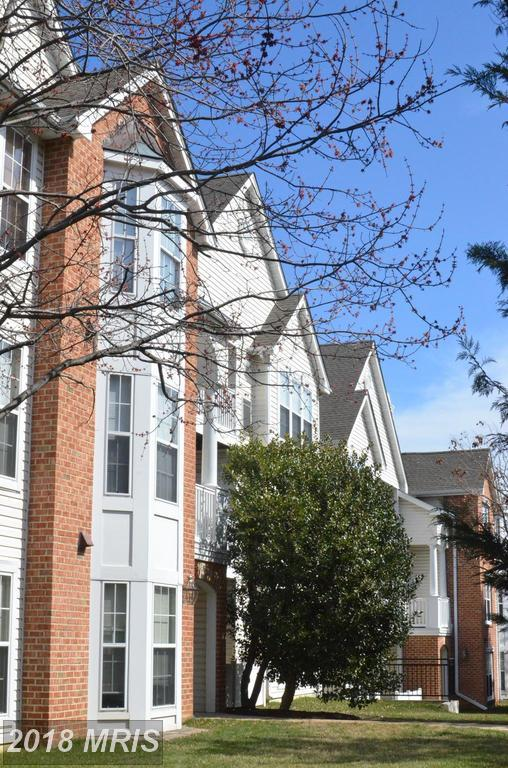 5951 Millrace Court C-202, Columbia, MD 21045 (#HW10301710) :: Pearson Smith Realty