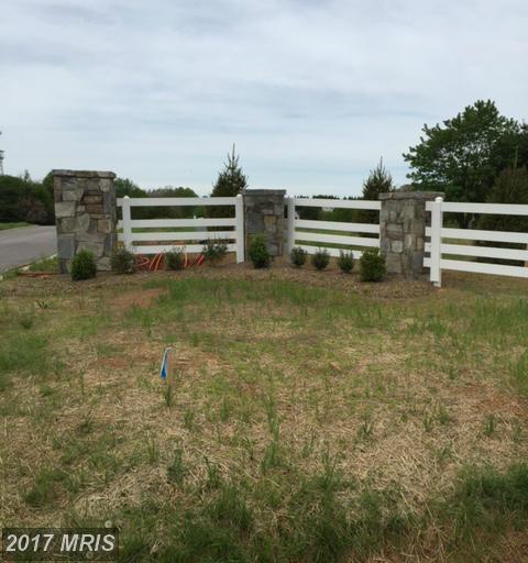 Triadelphia Mill Road, Clarksville, MD 21029 (#HW9951150) :: LoCoMusings