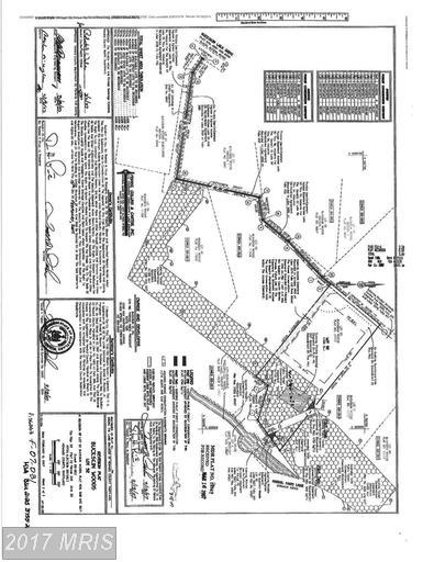 4280 Maisel Farm Lane, Ellicott City, MD 21042 (#HW9965313) :: LoCoMusings
