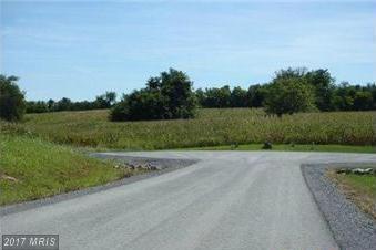 Green Hill Farm Lane, Shepherdstown, WV 25443 (#JF10016052) :: Pearson Smith Realty