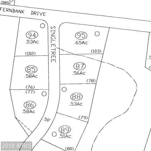 Singletree Drive, Shepherdstown, WV 25443 (#JF10278816) :: Pearson Smith Realty