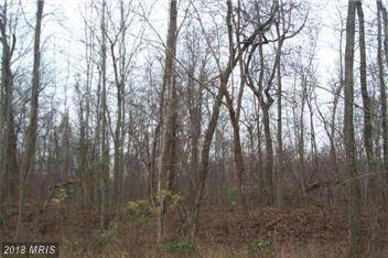 Timber Trail, King George, VA 22485 (#KG10216655) :: Green Tree Realty