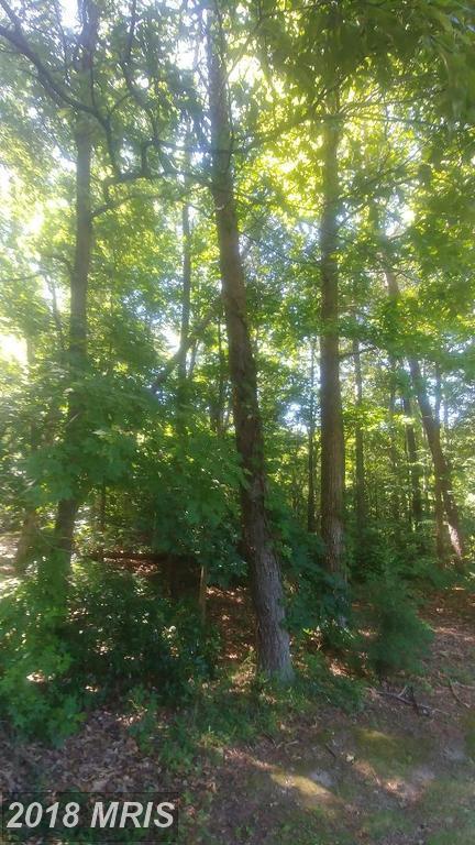 Mathias Point Rd, King George, VA 22485 (#KG10277300) :: Green Tree Realty