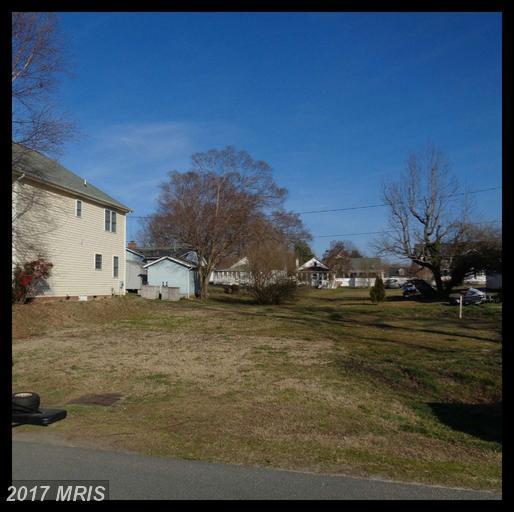 First Street, King George, VA 22485 (#KG9899103) :: LoCoMusings