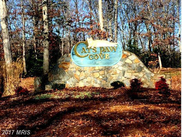 40 Oak Grove Drive, Mineral, VA 23117 (#LA9954465) :: Pearson Smith Realty