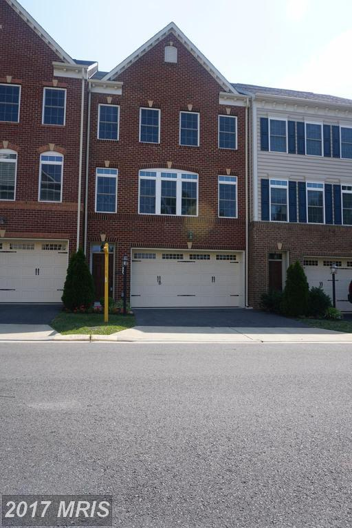 25136 Deerhurst Terrace, Chantilly, VA 20152 (#LO10011778) :: Pearson Smith Realty