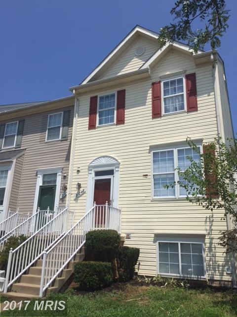 21048 Mossy Glen Terrace, Ashburn, VA 20147 (#LO10027399) :: Wicker Homes Group
