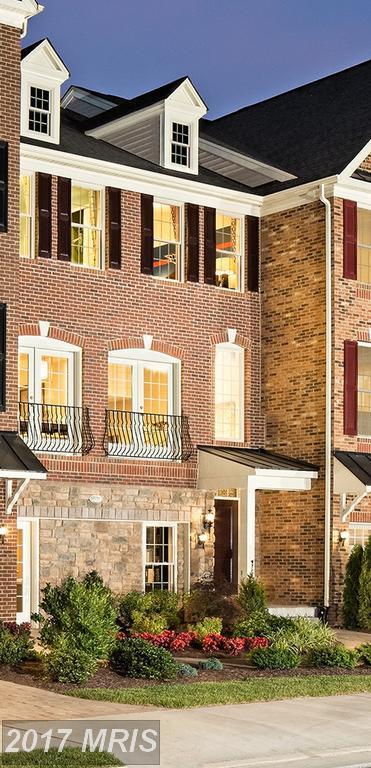 25061 Cambridge Hill Terrace, Chantilly, VA 20152 (#LO10029863) :: Pearson Smith Realty