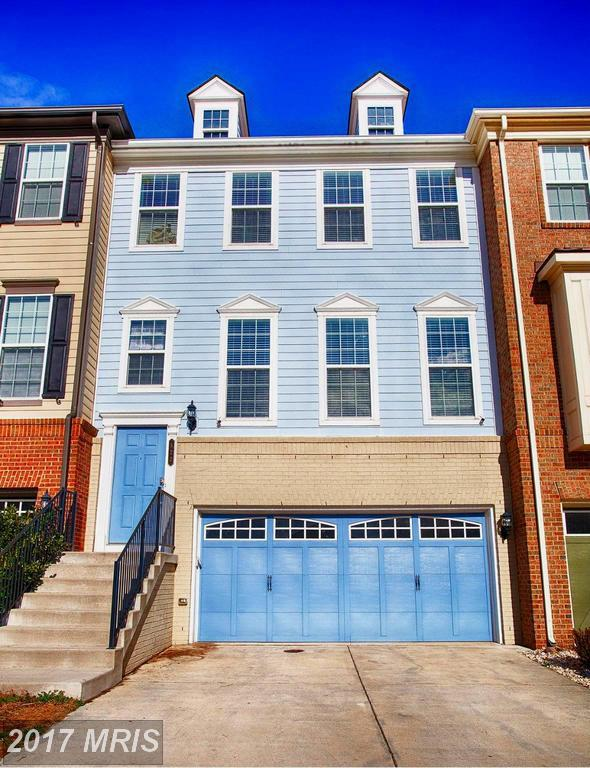 522 Red Raspberry Terrace, Leesburg, VA 20175 (#LO10030588) :: Pearson Smith Realty