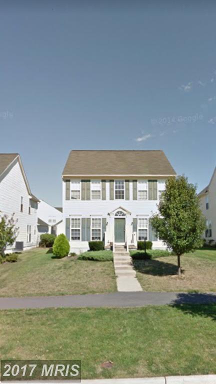 4 Tritapoe Place, Lovettsville, VA 20180 (#LO10035795) :: Pearson Smith Realty