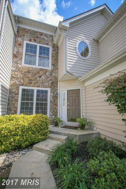 25624 Creek Run Terrace, Chantilly, VA 20152 (#LO10052074) :: Mosaic Realty Group