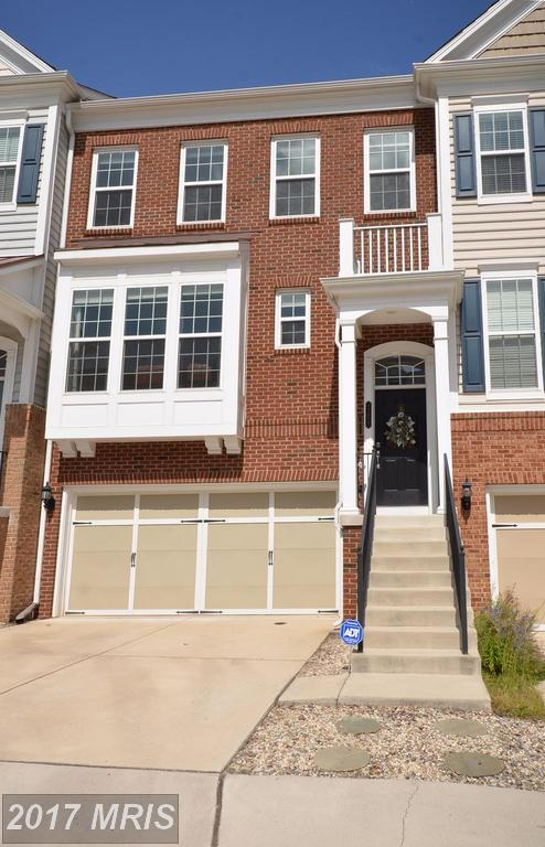 43622 White Cap Terrace, Chantilly, VA 20152 (#LO10059000) :: Provident Real Estate