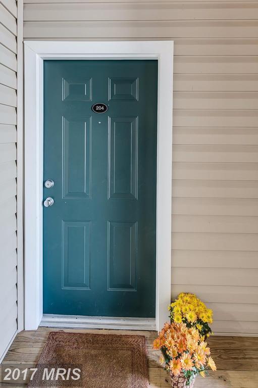 22607 Blue Elder Terrace #204, Ashburn, VA 20148 (#LO10080506) :: LoCoMusings