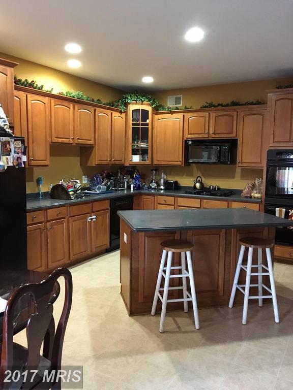 44255 Huron Terrace, Ashburn, VA 20147 (#LO10087389) :: RE/MAX Advantage Realty