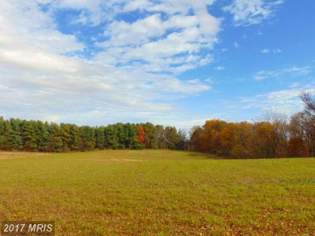 0 Simmons Road, Purcellville, VA 20132 (#LO10098312) :: Provident Real Estate