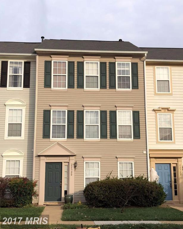 22320 Great Trail Terrace, Sterling, VA 20164 (#LO10102073) :: Pearson Smith Realty