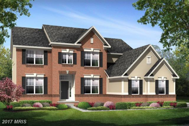 Grayhaven Place, Aldie, VA 20105 (#LO10125433) :: The Gus Anthony Team