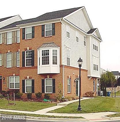 23204 Wrathall Drive, Ashburn, VA 20148 (#LO10132969) :: LoCoMusings