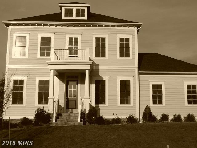 41625 Bloomfield Path Street, Ashburn, VA 20148 (#LO10135724) :: Arlington Realty, Inc.