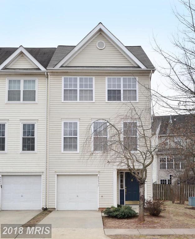 45531 Clear Spring Terrace, Sterling, VA 20165 (#LO10135819) :: The Belt Team