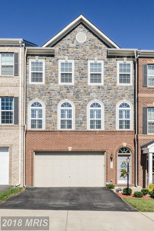 1724 Moultrie Terrace NE, Leesburg, VA 20176 (#LO10136833) :: Pearson Smith Realty