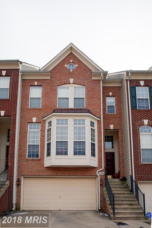 1105 Keokuk Terrace NE, Leesburg, VA 20176 (#LO10137305) :: The Putnam Group