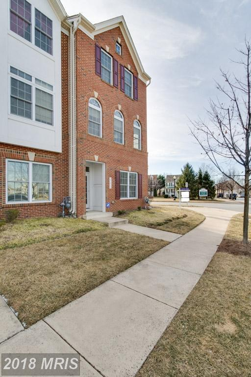 25452 S Riding Boulevard, Chantilly, VA 20152 (#LO10138096) :: The Hagarty Real Estate Team