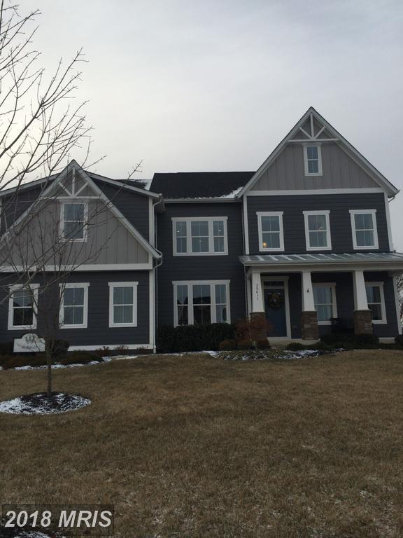 25011 Dahlia Manor Place, Aldie, VA 20105 (#LO10142219) :: Keller Williams Pat Hiban Real Estate Group