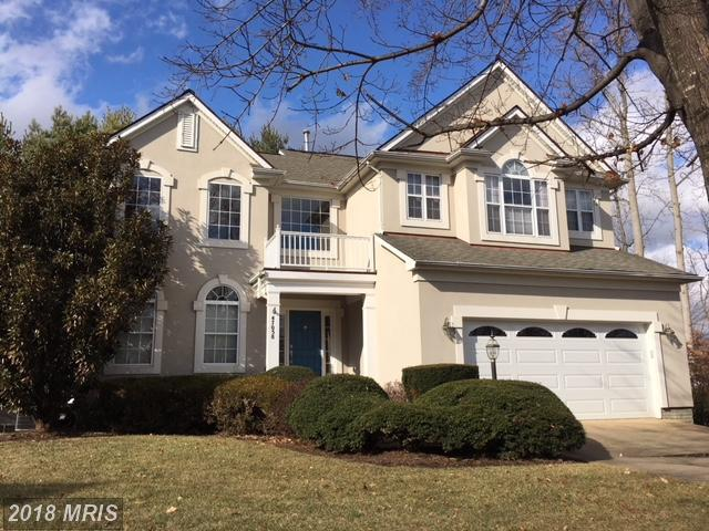 47058 Garrett Place, Potomac Falls, VA 20165 (#LO10152392) :: LoCoMusings