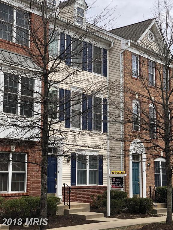 42767 Longworth Terrace, Chantilly, VA 20152 (#LO10172866) :: RE/MAX Executives