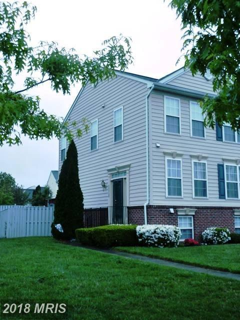 35920 Clover Terrace, Round Hill, VA 20141 (#LO10175247) :: SURE Sales Group