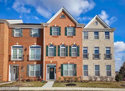 43016 Atoka Manor Terrace, Ashburn, VA 20148 (#LO10176788) :: SURE Sales Group