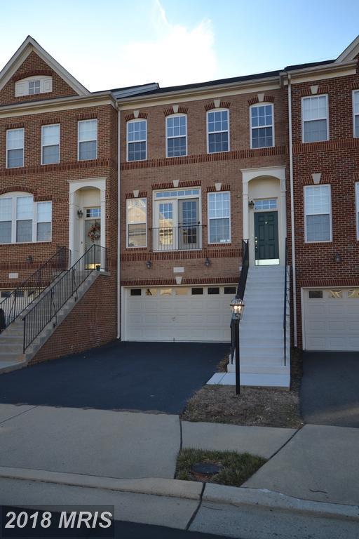 41867 Cinnabar Square, Aldie, VA 20105 (#LO10176885) :: SURE Sales Group