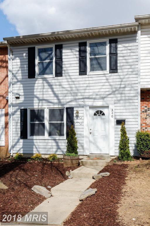 340 Nansemond Street SE, Leesburg, VA 20175 (#LO10183179) :: Bic DeCaro & Associates