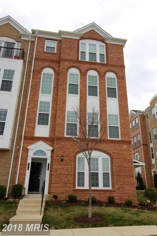 20618 Maitland Terrace, Ashburn, VA 20147 (#LO10185280) :: The Greg Wells Team