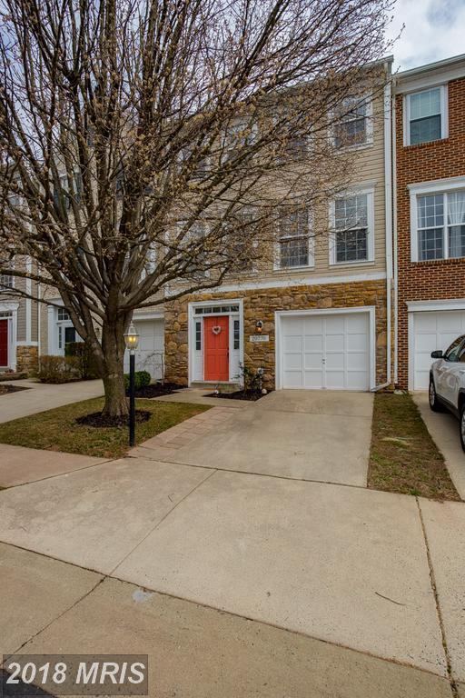 20770 Hollow Falls Terrace, Sterling, VA 20165 (#LO10187917) :: The Withrow Group at Long & Foster
