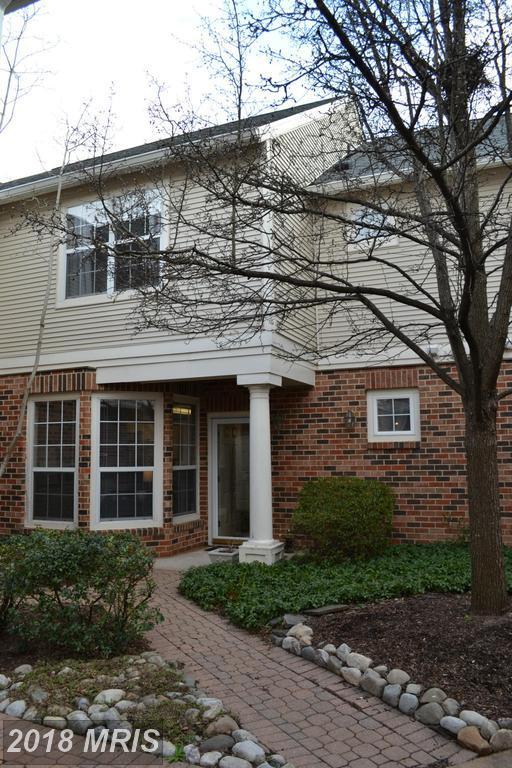 45061 Brae Terrace #102, Ashburn, VA 20147 (#LO10208745) :: The Greg Wells Team