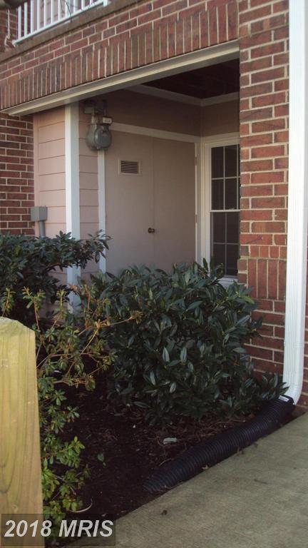 20963 Timber Ridge Terrace #101, Ashburn, VA 20147 (#LO10214386) :: The Greg Wells Team