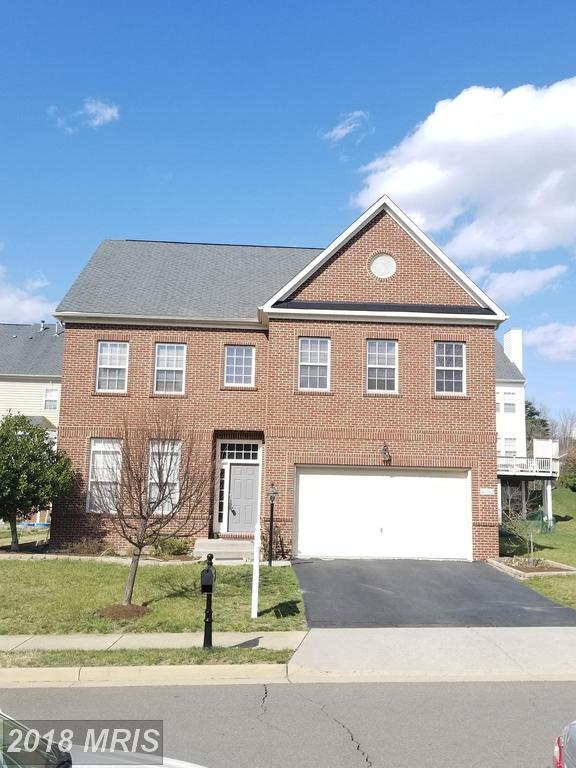 46062 Earle Wallace Circle, Sterling, VA 20166 (#LO10214476) :: The Greg Wells Team