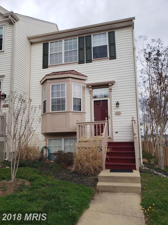 401 Mcdaniel Drive, Purcellville, VA 20132 (#LO10215763) :: Provident Real Estate