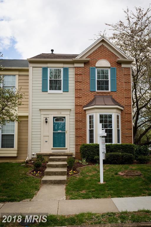 530 Currant Terrace NE, Leesburg, VA 20176 (#LO10219300) :: LoCoMusings