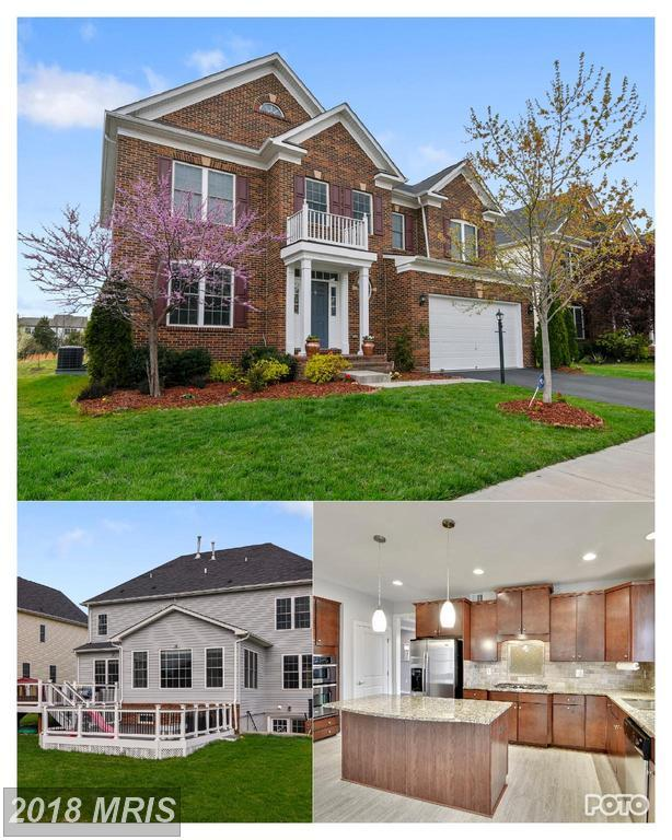 23277 Fallen Hills Drive, Ashburn, VA 20148 (#LO10219903) :: The Putnam Group